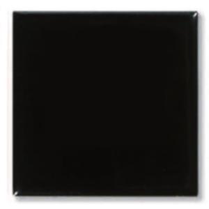 Пигмент Черный 6220
