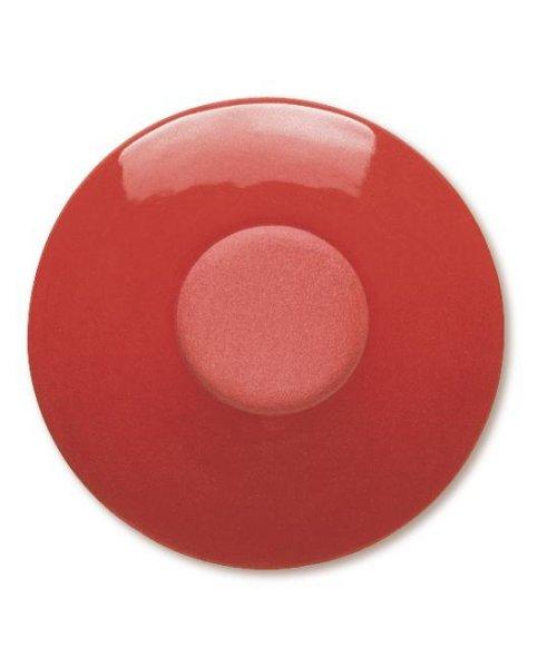 Ангоб TerraColor Ярко-красный - Intensivrot hell 8648 (848)