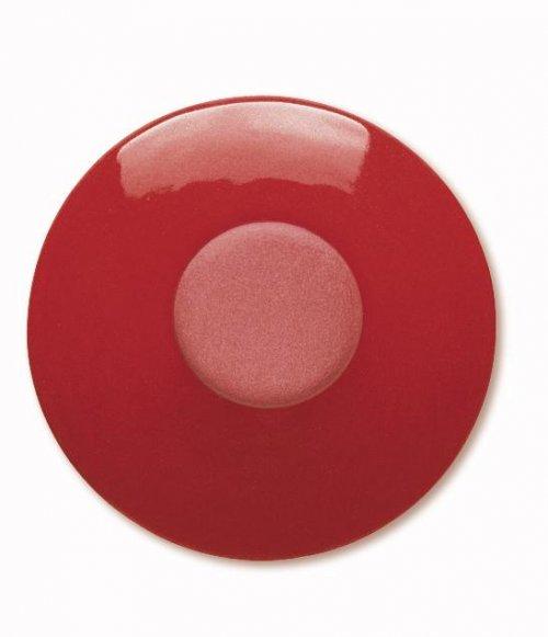 Ангоб TerraColor Красный - Intensivrot 8649 (849)