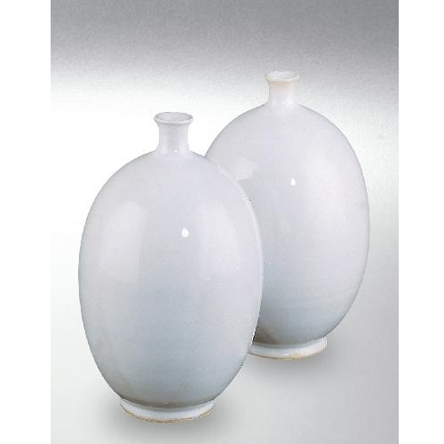 Глазурь TerraColor Белый глянец - Weiß glänzend 8250A